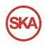 SKA_sm