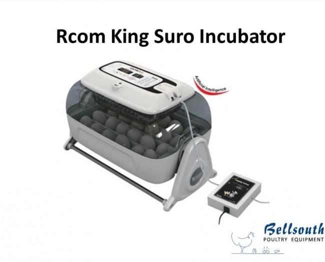 Rcom King Suro incubator