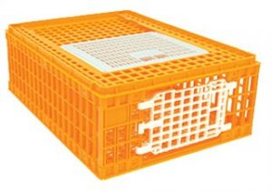 Poultry crate m